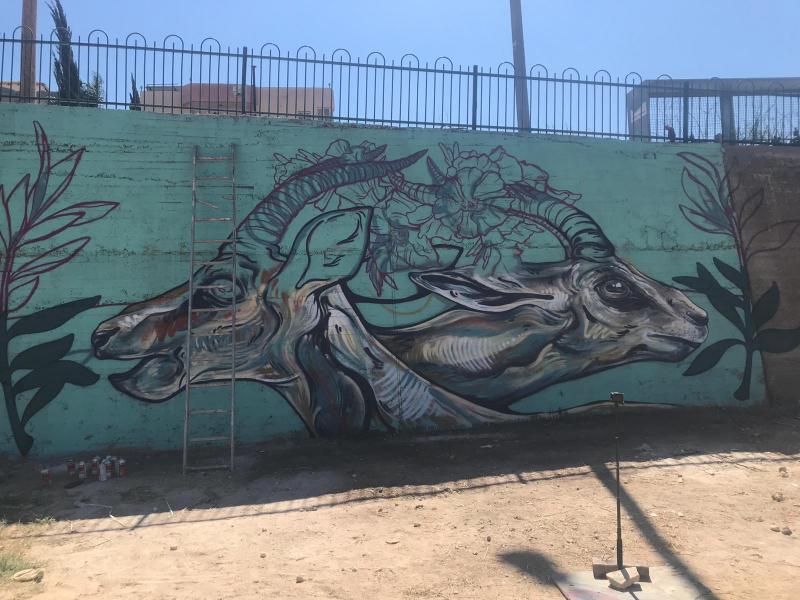 מיזם קהילתי של תכנית צעירות אקטיביסטיות:  ציורי  גרפיטי באבו סנאן